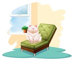 Gato encima de la silla