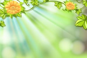 Background design with flowers and bright light