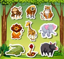 Many animals sticket in jungle background