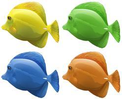 Fyra olika färgar av fisk