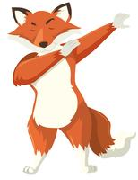 A fox dab on white background