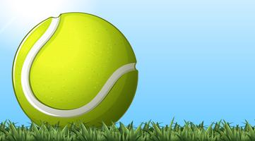 Tennis ball on the ground vector