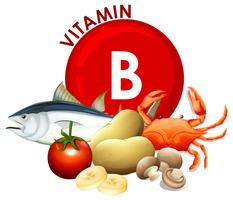A Set of Vitamin B Food