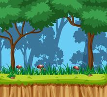 Het natuurboslandschap