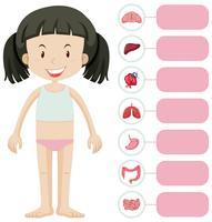 Niña y diferentes partes del cuerpo.