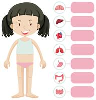 Menina e diferentes partes do corpo