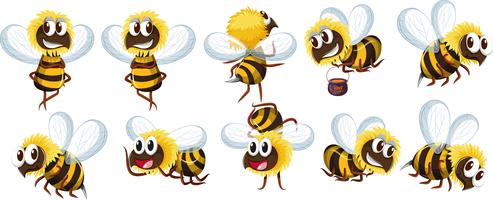 Set of bee character vector