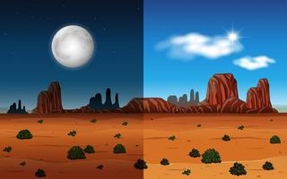 Day and night in a desert