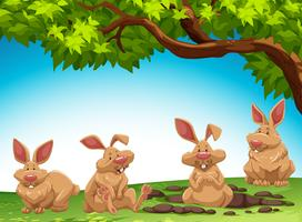 Group of rabbit digging ground vector