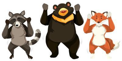 Three animals dancing white background