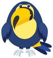 Pájaro tucán con cara feliz
