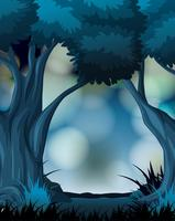 A dark forest background