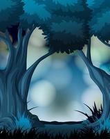 En mörk skogsbakgrund