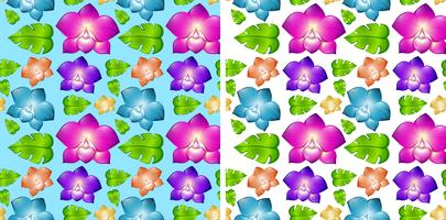 Two seamless backgrounds with colorful flowers vector