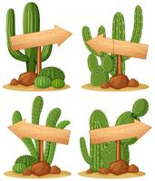 Wooden signs in cactus garden