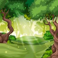 A green forest background