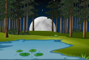 Nature scene with fullmoon and pond in forest