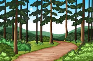Bela natureza verde paisagem