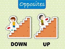 Tegengestelde woorden voor down and up