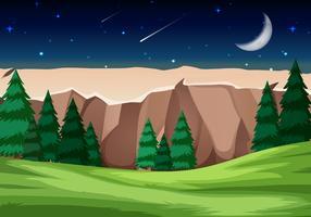 Scène de parc national de nuit
