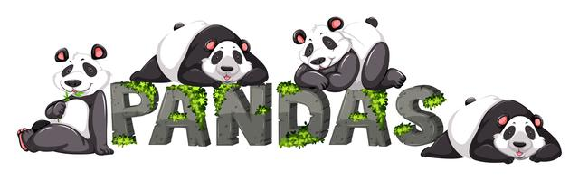 Vier panda's door het dierentuinteken