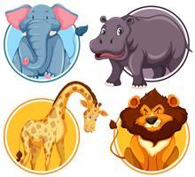 Conjunto de animais selvagens africanos no banner do círculo