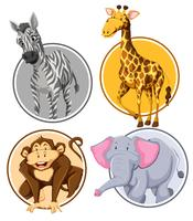 Set di banner di cerchio di animali selvatici