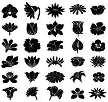 Black floral templates vector