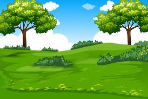 En naturlig grön mall