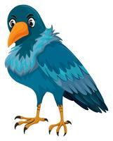 Vogel mit blauer Feder