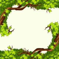 Un marco de rama de árbol