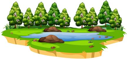 Lago en el paisaje de la naturaleza