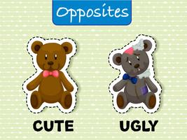 Opposite wordcard for cute and ugly