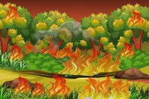 Gevaarlijke bosbrandachtergrond