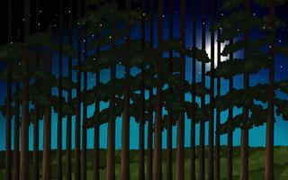 Skog på nattscenen