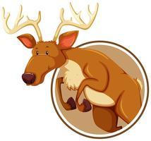 Un ciervo en banner de etiqueta