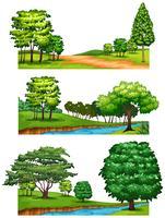 Natuurscènes met bomen en rivieren