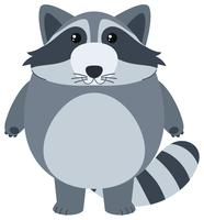 Cute raccoon with happy face