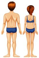 Male and Female Back Side vector