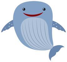 Ballena azul sobre fondo blanco