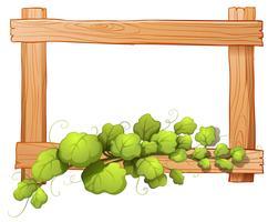 Un marco de madera con una planta frondosa.