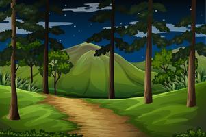 Cena de floresta com trilha para a montanha