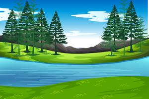 Lake in nature background