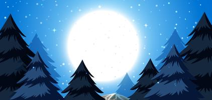 A winter night background