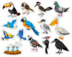 Sticker set with many types of birds