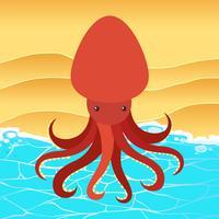 Rode octopus op het strand