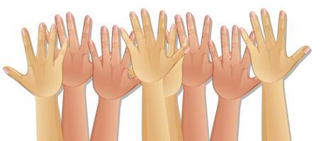 Mãos humanas no fundo branco