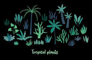 Conjunto del vector de plantas tropicales abstractas. Elementos de diseño