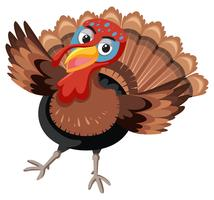 Turkey on white background vector