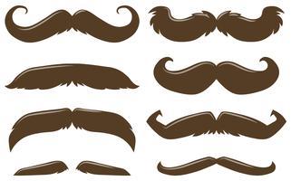 Olika stil av mustasch i brun färg